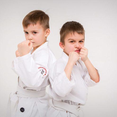 karate-min